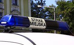 Nawet tapczan tonął w śmieciach - Serwis informacyjny z Wodzisławia Śląskiego - naszwodzislaw.com
