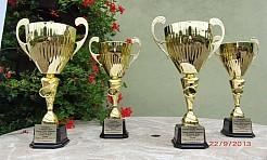 Zagrali o Puchar Wójta Gminy Godów - Serwis informacyjny z Wodzisławia Śląskiego - naszwodzislaw.com