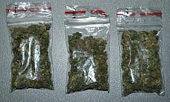 Rydułtowianin został zatrzymany za posiadanie marihuany. Teraz grozi mu do 10 lat więzienia - Serwis informacyjny z Wodzisławia Śląskiego - naszwodzislaw.com