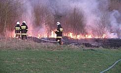 Stop pożarom traw - ruszyła ogólnopolska akcja  - Serwis informacyjny z Wodzisławia Śląskiego - naszwodzislaw.com