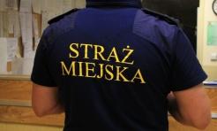 Za brak tabliczki z numerem domu grozi mandat. Straż Miejska przeprowadza kontrole  - Serwis informacyjny z Wodzisławia Śląskiego - naszwodzislaw.com