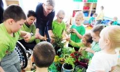 Kolor zielony opanował wodzisławskie przedszkole numer 6  - Serwis informacyjny z Wodzisławia Śląskiego - naszwodzislaw.com