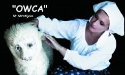 """Classic Ballanga Teatr zaprasza na komedię """"OWCA"""" St. Stratijewa - Serwis informacyjny z Wodzisławia Śląskiego - naszwodzislaw.com"""