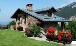 Czas na odświeżenie - przygotuj dom i ogród na wiosnę - Serwis informacyjny z Wodzisławia Śląskiego - naszwodzislaw.com