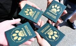 W Jastrzębiu-Zdroju powstał inspektorat OTOZ Animals - Serwis informacyjny z Wodzisławia Śląskiego - naszwodzislaw.com