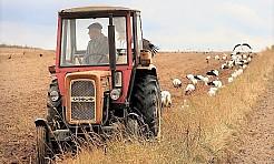 Rolnicy coraz bliżej zniesienia ograniczeń na granicy - Serwis informacyjny z Wodzisławia Śląskiego - naszwodzislaw.com
