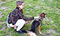 14 lipca darmowe porady behawioralne dla psów - Serwis informacyjny z Wodzisławia Śląskiego - naszwodzislaw.com