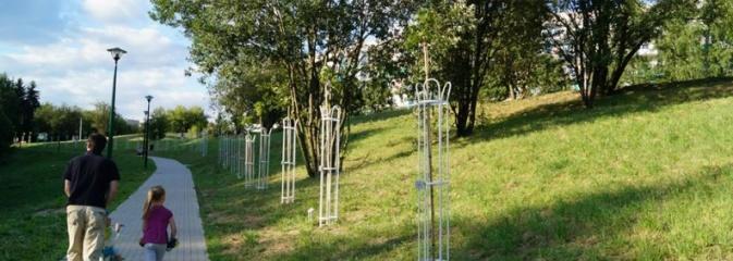 Przy drzewkach znajdujących się na Alei Wodzisławskich Dzieciaków umieszczono tabliczki z nazwami    - Serwis informacyjny z Wodzisławia Śląskiego - naszwodzislaw.com