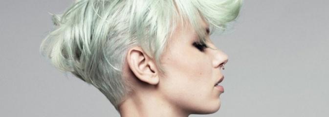 L'Oreal Color Trophy - konkurs profesjonalnych fryzjerów - Serwis informacyjny z Wodzisławia Śląskiego - naszwodzislaw.com