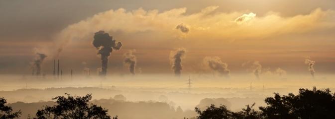 Bezsmogowcy to MY - konkurs ekologiczny - Serwis informacyjny z Wodzisławia Śląskiego - naszwodzislaw.com