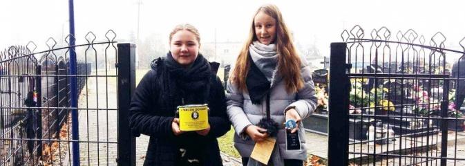 Akcja zakończona sukcesem. Na cmentarzach w naszym powiecie zebrano 64 tys. złotych - Serwis informacyjny z Wodzisławia Śląskiego - naszwodzislaw.com