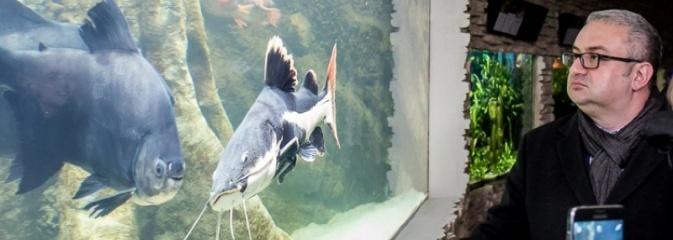 Dwa nowe zbiorniki w Akwarium w Śląskim Ogrodzie Zoologicznym zostały oddane dla zwiedzających - Serwis informacyjny z Wodzisławia Śląskiego - naszwodzislaw.com