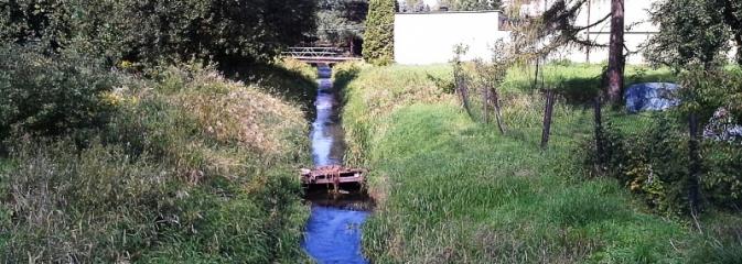 Rzeka Leśnica po konserwacji  - Serwis informacyjny z Wodzisławia Śląskiego - naszwodzislaw.com