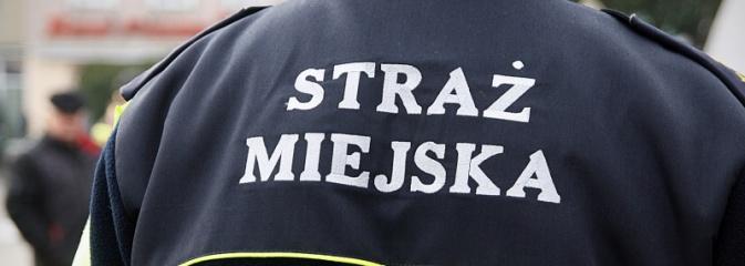 Straż Miejska podsumowała ubiegły rok: Więcej zgłoszeń, mniej ujawnionych wykroczeń  - Serwis informacyjny z Wodzisławia Śląskiego - naszwodzislaw.com