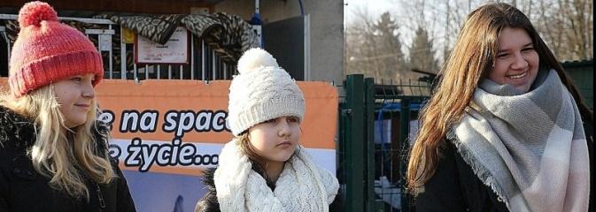 Aż 386 kg karmy dla zwierzaków od Młodzieżowej Rady Uczniowskiej  - Serwis informacyjny z Wodzisławia Śląskiego - naszwodzislaw.com