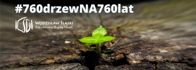 Miasto i mieszkańcy posadzą 760 jubileuszowych drzew  - Serwis informacyjny z Wodzisławia Śląskiego - naszwodzislaw.com