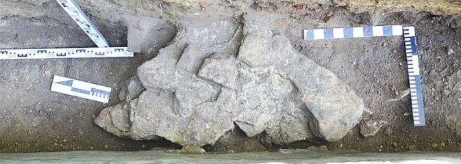 W Wodzisławiu Śląskim odkryto relikty z nieistniejącego już zamku - Serwis informacyjny z Wodzisławia Śląskiego - naszwodzislaw.com