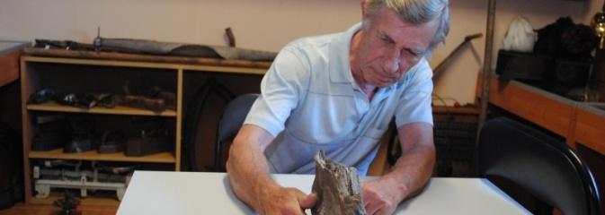 Kolejny ząb mamuta na ziemi wodzisławskiej! Można go podziwiać w Radlinie! - Serwis informacyjny z Wodzisławia Śląskiego - naszwodzislaw.com