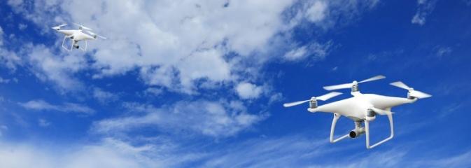 Nad Mszaną będą latać drony. Naukowcy poszukują m.in. barszczu Sosnowskiego  - Serwis informacyjny z Wodzisławia Śląskiego - naszwodzislaw.com