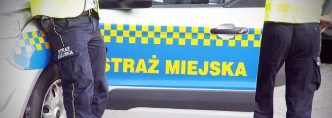 Na jakiej podstawie strażnicy miejscy mogą wejść na naszą posesję i kontrolować paleniska?  - Serwis informacyjny z Wodzisławia Śląskiego - naszwodzislaw.com