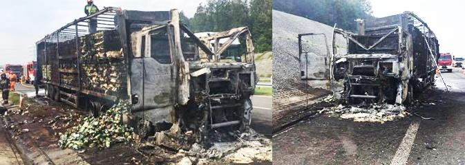Pożar w Gorzycach na A1. Spłonęła ciężarówka  - Serwis informacyjny z Wodzisławia Śląskiego - naszwodzislaw.com