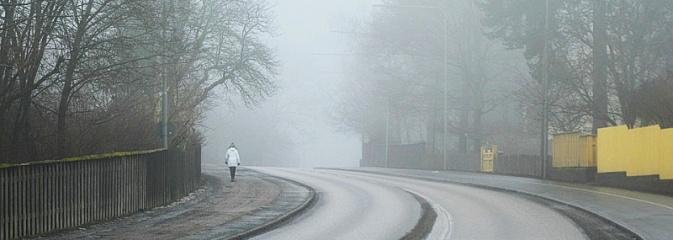 Jesień to niebezpieczny czas dla wszystkich użytkowników dróg  - Serwis informacyjny z Wodzisławia Śląskiego - naszwodzislaw.com