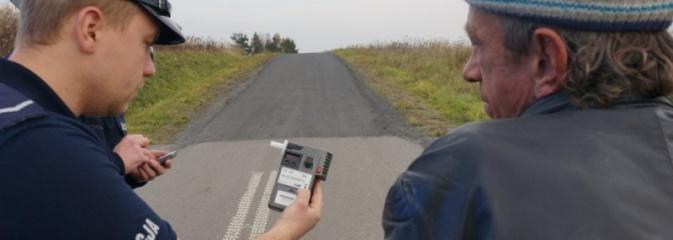Policjanci przyglądali się wzajemnym relacjom między kierującymi a pieszymi. Nałożono 41 mandatów - Serwis informacyjny z Wodzisławia Śląskiego - naszwodzislaw.com