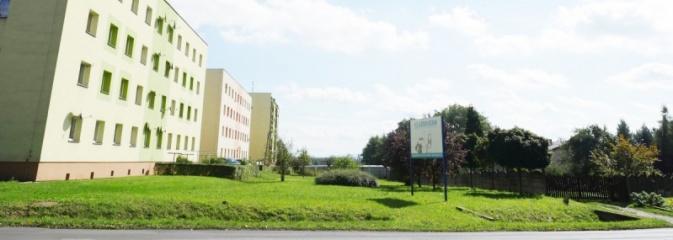 Wodzisław: Rozwój terenów zieleni. Ogłoszono przetarg. Magistrat poszukuje zainteresowane firmy  - Serwis informacyjny z Wodzisławia Śląskiego - naszwodzislaw.com