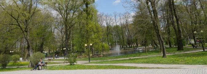 Ponad 20 tys. nowych krzewów i drzew w mieście - Serwis informacyjny z Wodzisławia Śląskiego - naszwodzislaw.com