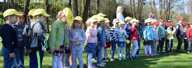 Akcja sadzenia drzewek na 100-lecie odzyskania niepodległości w Gminie Mszana. ZDJĘCIA  - Serwis informacyjny z Wodzisławia Śląskiego - naszwodzislaw.com