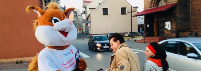 WiewiórINKA podróżuje po Polsce i promuje Inowrocław, przyjedzie do Wodzisławia - Serwis informacyjny z Wodzisławia Śląskiego - naszwodzislaw.com