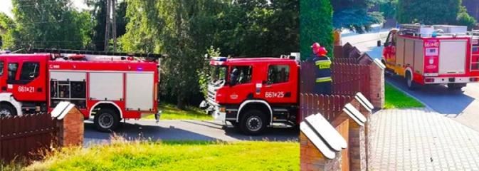 O krok od tragedii! Akcja strażaków na jednej z posesji w Mszanie - Serwis informacyjny z Wodzisławia Śląskiego - naszwodzislaw.com