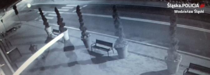 Policja poszukuje sprawców kradzieży z włamaniem. Opublikowano nagranie!  - Serwis informacyjny z Wodzisławia Śląskiego - naszwodzislaw.com