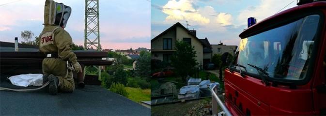 Akcja strażaków w Radlinie. Konieczne było usunięcie gniazd owadów - Serwis informacyjny z Wodzisławia Śląskiego - naszwodzislaw.com