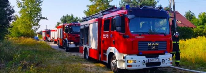 Strażacy walczyli z pożarem trawy w Godowie - Serwis informacyjny z Wodzisławia Śląskiego - naszwodzislaw.com
