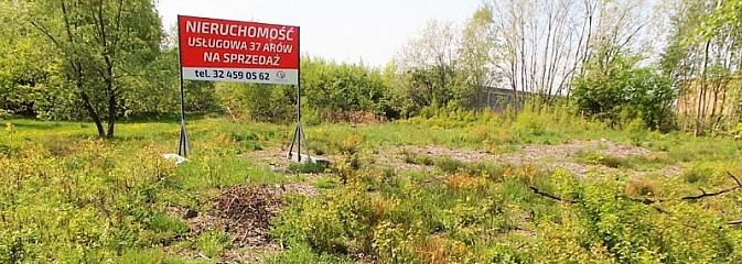 Nieruchomości gruntowe przy ul. Mieszka na sprzedaż - Serwis informacyjny z Wodzisławia Śląskiego - naszwodzislaw.com