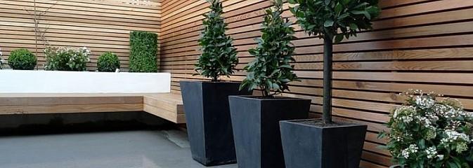 Twój ogród: Donica z drewna, czy donica z plastiku? - Serwis informacyjny z Wodzisławia Śląskiego - naszwodzislaw.com
