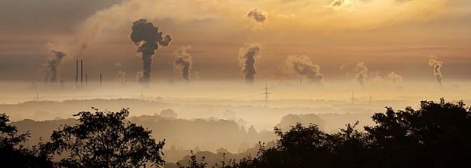 Przełącz się na gaz. Dodatkowe dofinansowanie do kotłów gazowych - Serwis informacyjny z Wodzisławia Śląskiego - naszwodzislaw.com