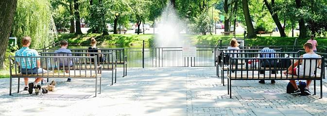 Co zmieniło się w parku miejskim na przestrzeni lat? - Serwis informacyjny z Wodzisławia Śląskiego - naszwodzislaw.com