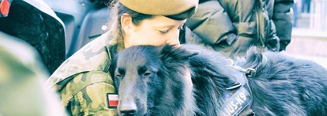 Psy będą służyć w 13. Śląskiej Brygadzie Obrony Terytorialnej - Serwis informacyjny z Wodzisławia Śląskiego - naszwodzislaw.com