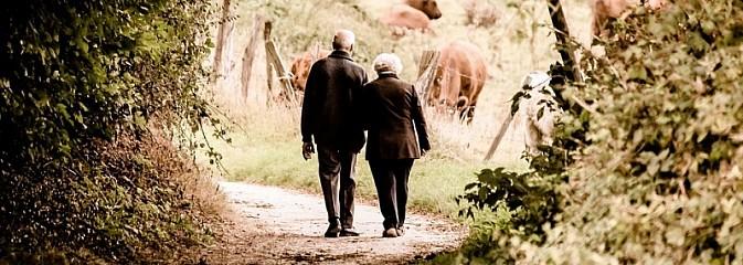 Masz ponad 50 lat? Weź udział w projekcie Seniorzy bez Granic - Serwis informacyjny z Wodzisławia Śląskiego - naszwodzislaw.com