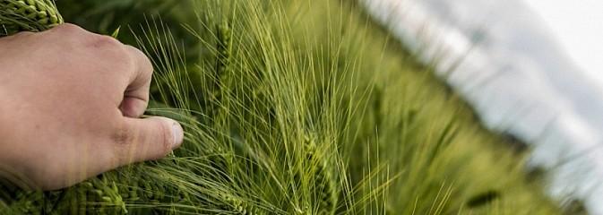 Weź udział w konkursie dla rolników - Serwis informacyjny z Wodzisławia Śląskiego - naszwodzislaw.com