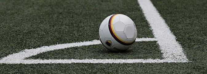 Nowy konkurs dla klubów szansą na dotację na rozwój sportu - Serwis informacyjny z Wodzisławia Śląskiego - naszwodzislaw.com