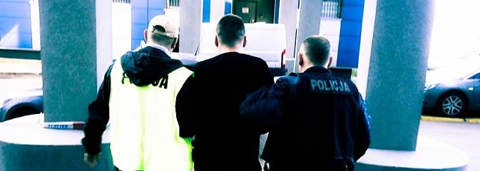 Śląska policja uderzyła w gangi pseudokibiców. W tle narkotyki [FOTO i WIDEO] - Serwis informacyjny z Wodzisławia Śląskiego - naszwodzislaw.com