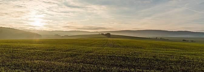 Weź udział w konkursie na temat polskiego rolnictwa - Serwis informacyjny z Wodzisławia Śląskiego - naszwodzislaw.com