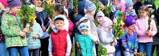 Festiwal Palmy w mszańskim parku za nami - Serwis informacyjny z Wodzisławia Śląskiego - naszwodzislaw.com
