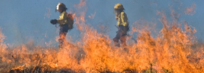 Policja przypomina. Wypalanie traw jest niedozwolone! - Serwis informacyjny z Wodzisławia Śląskiego - naszwodzislaw.com