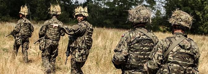 Podczas wichury zaginęli drwale... Szkolenie śląskich terytorialsów [FOTO]  - Serwis informacyjny z Wodzisławia Śląskiego - naszwodzislaw.com