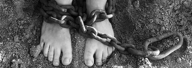 Europejski Dzień przeciwko Handlowi Ludźmi - Serwis informacyjny z Wodzisławia Śląskiego - naszwodzislaw.com