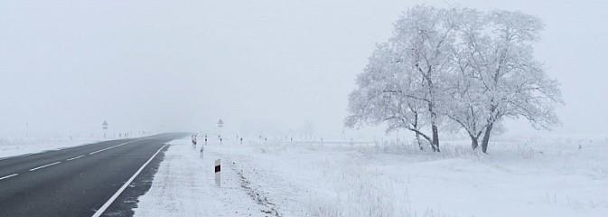 Zimowe utrzymanie dróg. Do kogo dzwonić w razie problemów? - Serwis informacyjny z Wodzisławia Śląskiego - naszwodzislaw.com